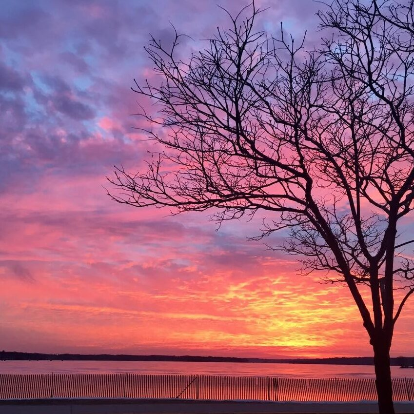 Tree in foreground of beach, with sunset view over Pewaukee Lake