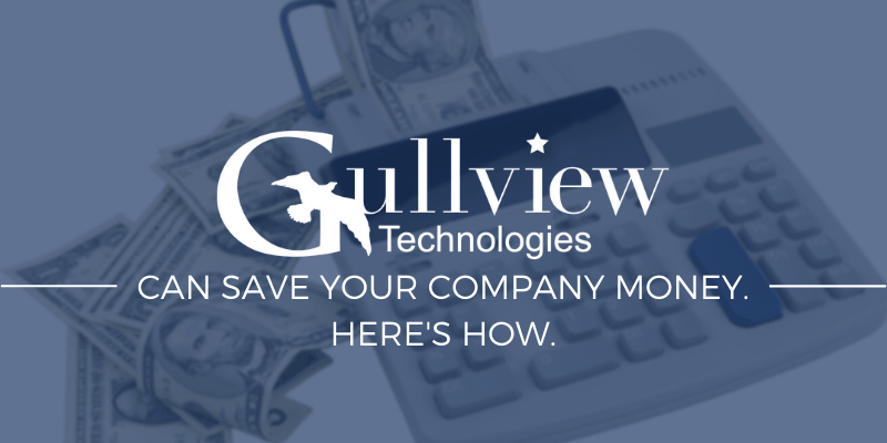 GULLVIEW CAN SAVE YOUR COMPANY MONEY.