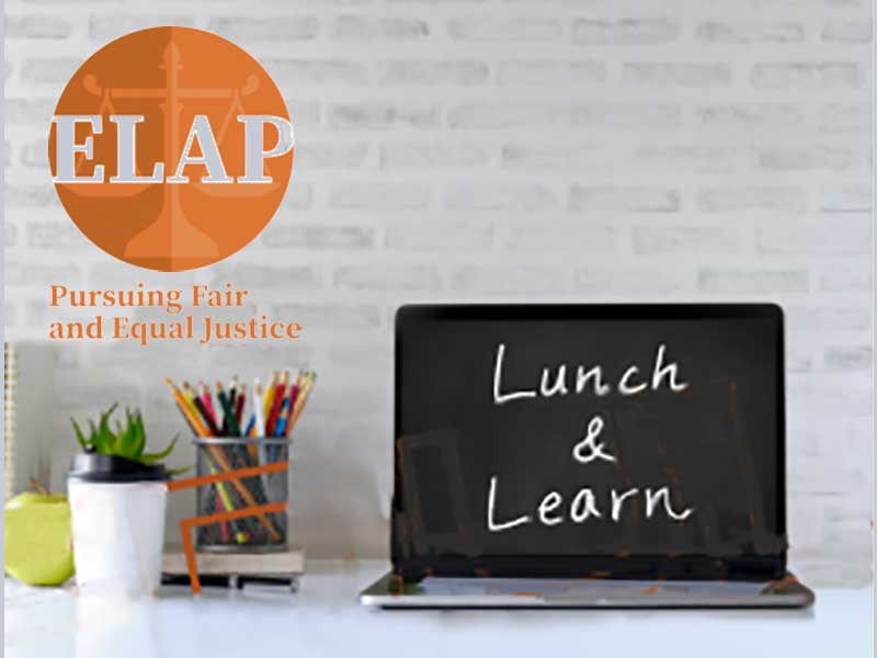 ELAP Lunch and Learn Virtual Advice