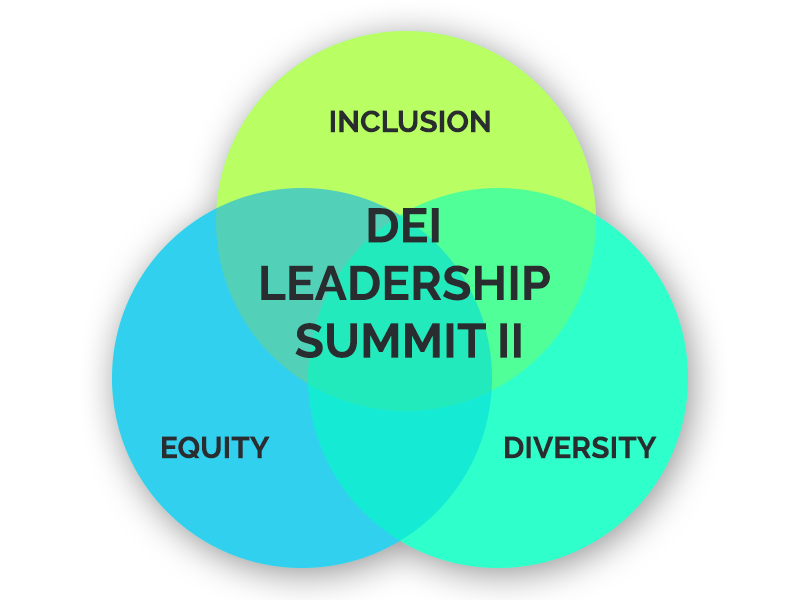 Diversity Equity Inclusion Leadership Summit Part II