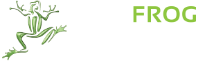 leapfrog-logo