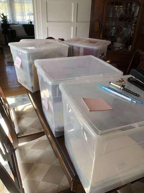 Would you like some help with your organizing projects?