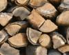 Cord Wood vs. Pellets