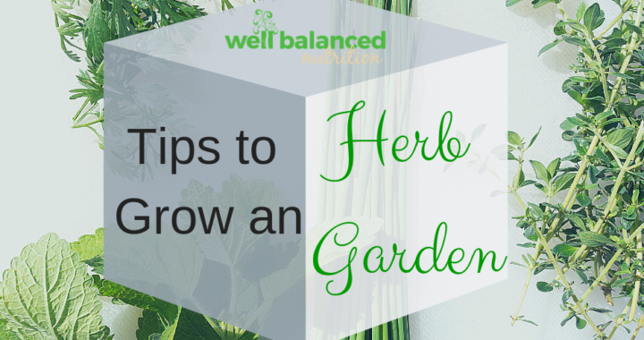 Want More Flavor? Read These Tips To Grow an Herb Garden