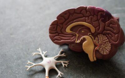 How Ketamine Works: The Brain Science Behind Ketamine for Depression