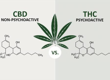 Does CBD have any Psychoactive Effects