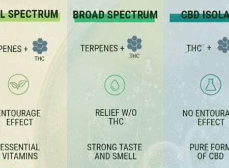 Difference between Full Spectrum and Isolate CBD