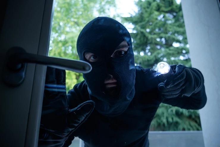Burglar Searching