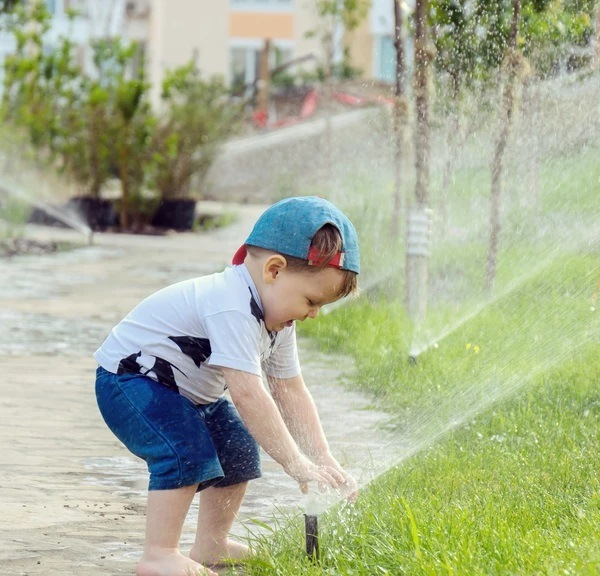 North Texas Watering Guidelines For Happy Lawns