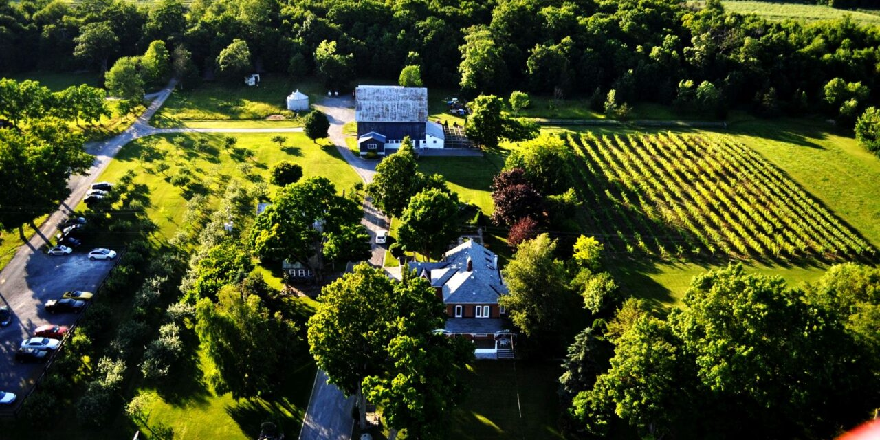 Spotlight on Prince Edward County