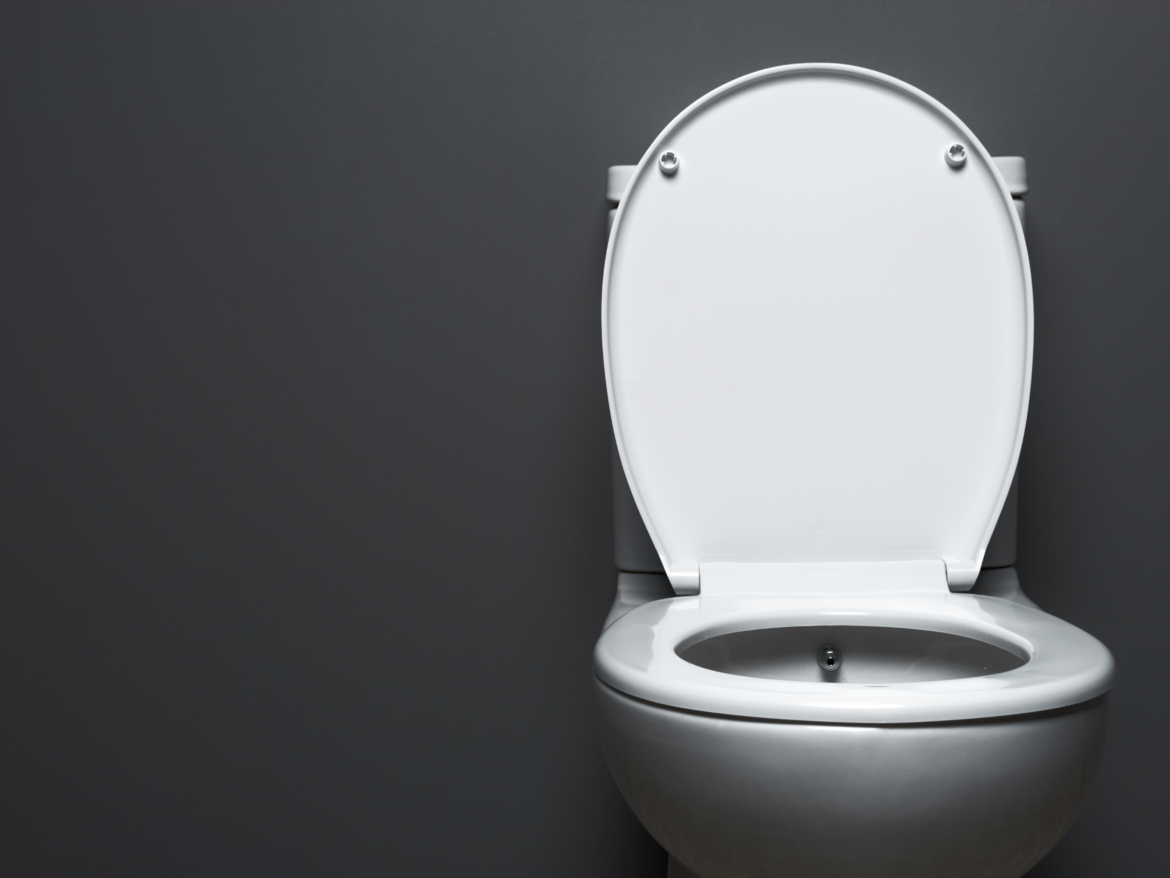 Toilet Drain Clog? Here's How to Use a Plumber Snake