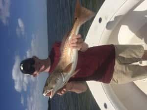 More Giant Redfish