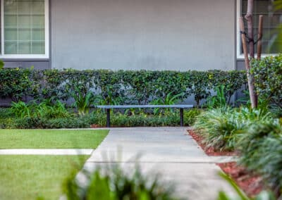garden pathway with bench