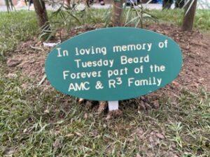 Tree memorial sign