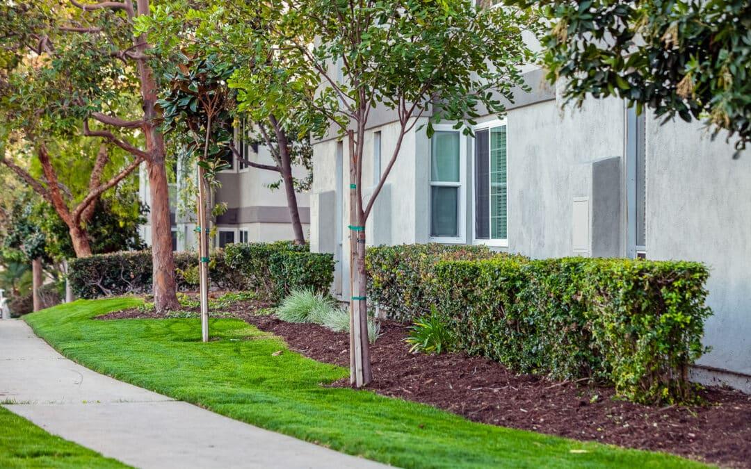 Summerwood Apartment Homes pathways