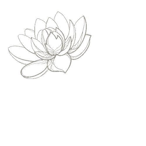 the lotus bloom co