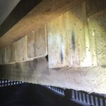 Borer attacks to the subfloor timbers
