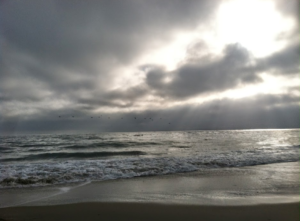 happy seas