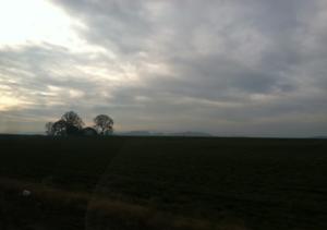seattle pike skyline