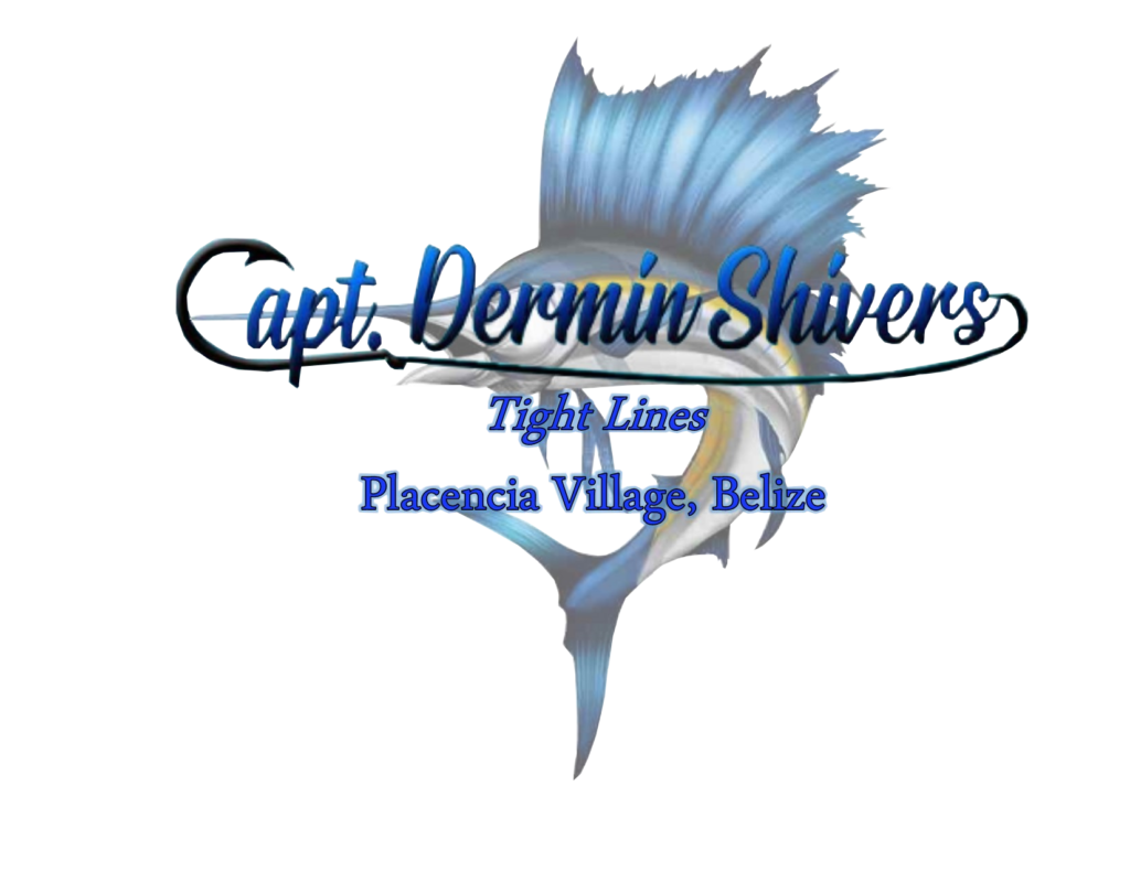 Capt dermin logo