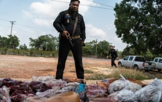 Ranger with wildlife meat during raid with wildlife rapid rescue team.