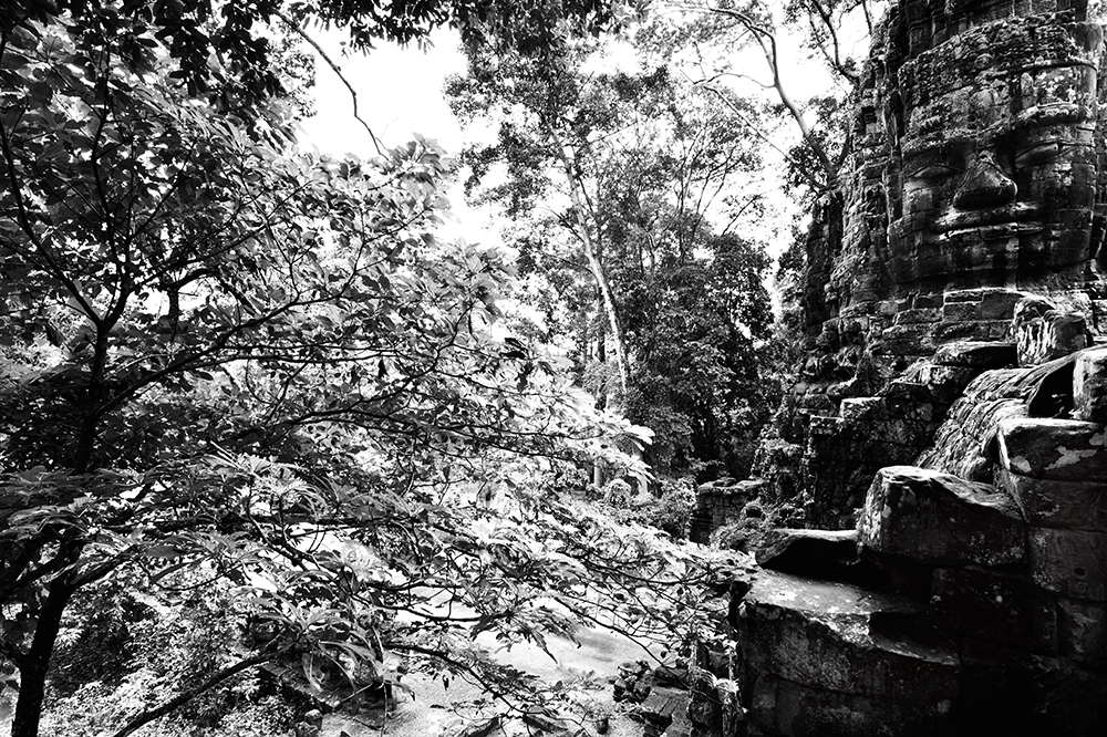 Bayon temple within the Angkor Archaeological Park and surrounding forest. Credit: Jeremy Holden