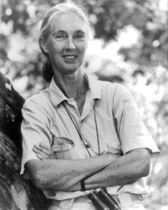 Jane Goodall, 1997