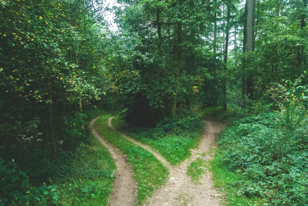 The Ambiguous Road | God's Calling