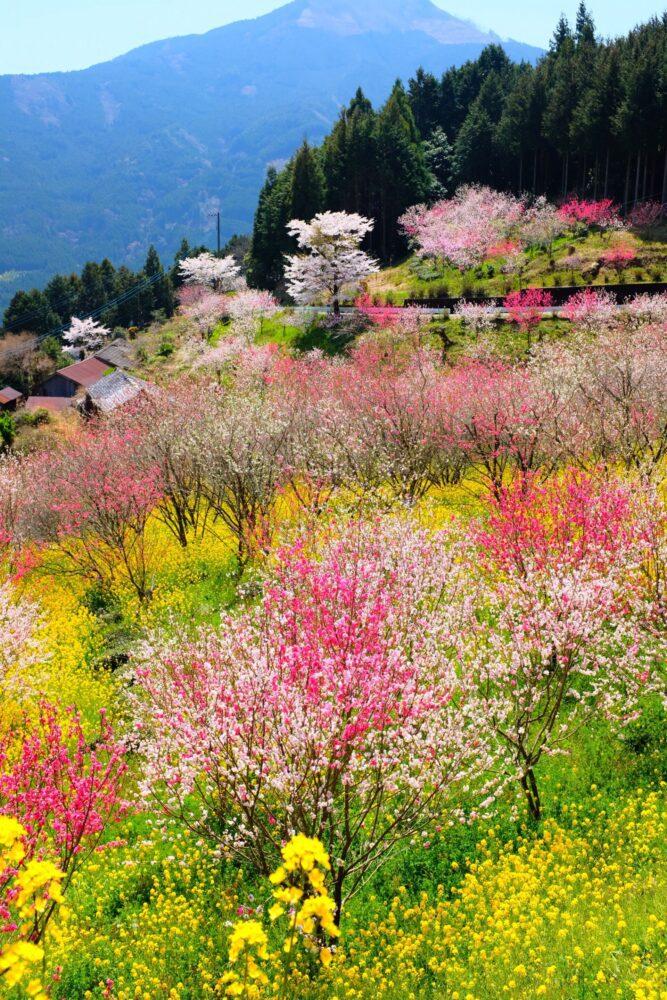 God in the Seasons | Poem