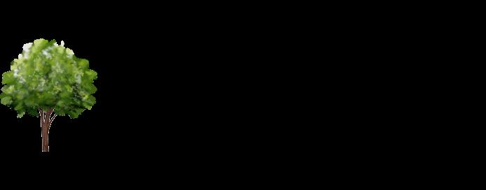 Lone Tree Family Practice logo