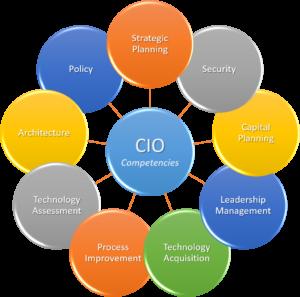 CIO 9 Competencies