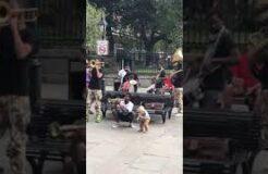 Toddler Street Performer in New Orleans