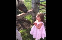 Absolutely Hilarious - Cutest Little Girl Ever Sees Horse for The First Time