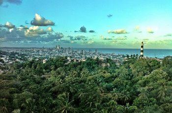 Olinda faz festa gratuita para celebrar Dia Nacional do Samba