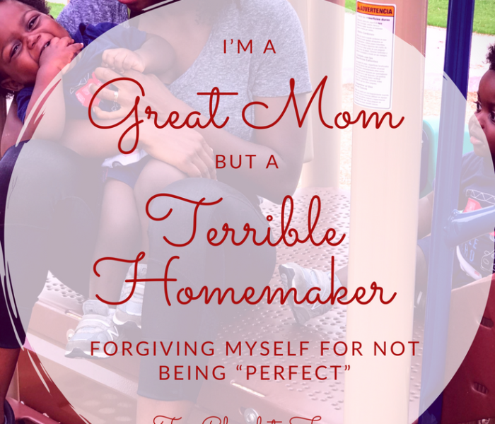 I'm A Great Mom But A Terrible Homemaker