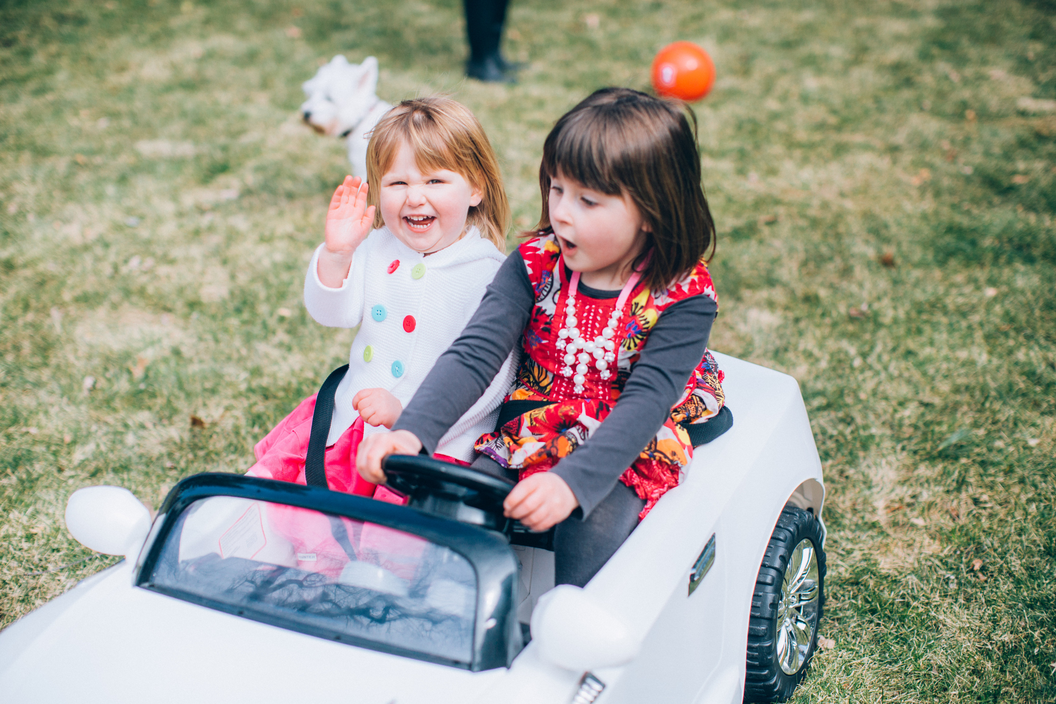 View More: http://allheartphotovideo.pass.us/moorefamily