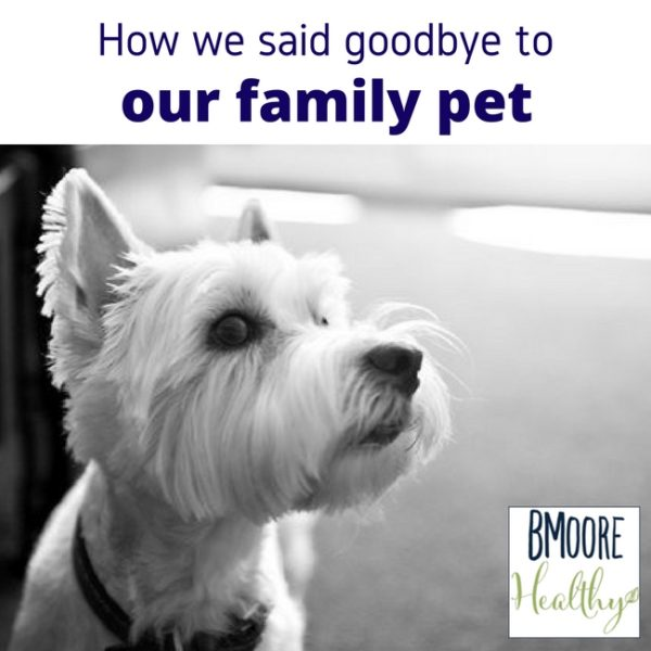 How we said goodbye to our family pet