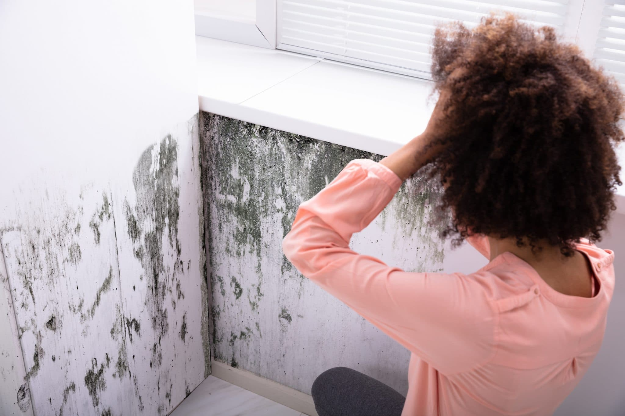 Home Problems That May Cause Illness