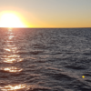 Image of the beauty that is the Sea of Cortez.