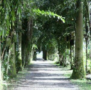 Villavicencio turismo-paisaje2