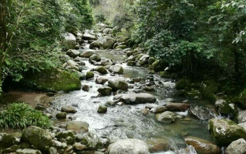Actividades y planes en Villavicencio2
