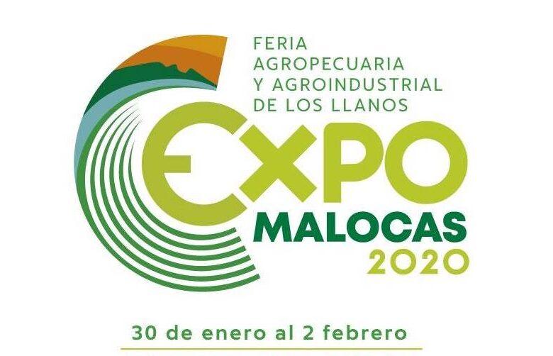 Programación Expomalocas 2020