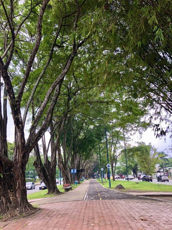 Alameda avenida 40 de Villavicencio
