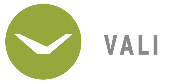 vali homes visual identity