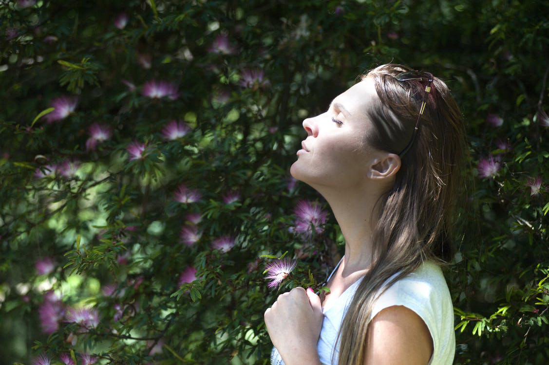 Using Traditional Chinese Medicine for Alleviating Stress