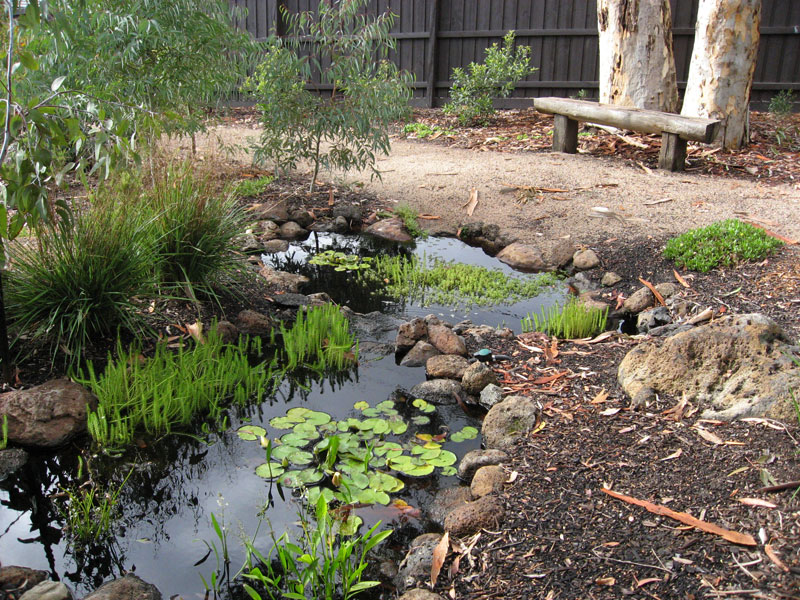 Pond in the Healing garden at Natural Pathways