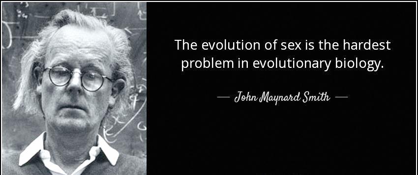 evolution of sex