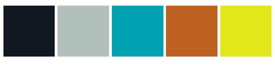 FRDM brand color palette