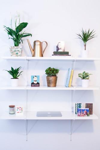Bookshelf Desk with Plants