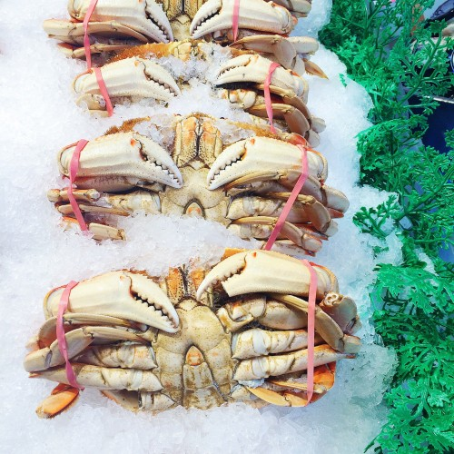 Pike Place Market Dungeness Crabs
